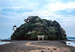 写真:木が生い茂っている小さな山と、その前に建っている鳥居